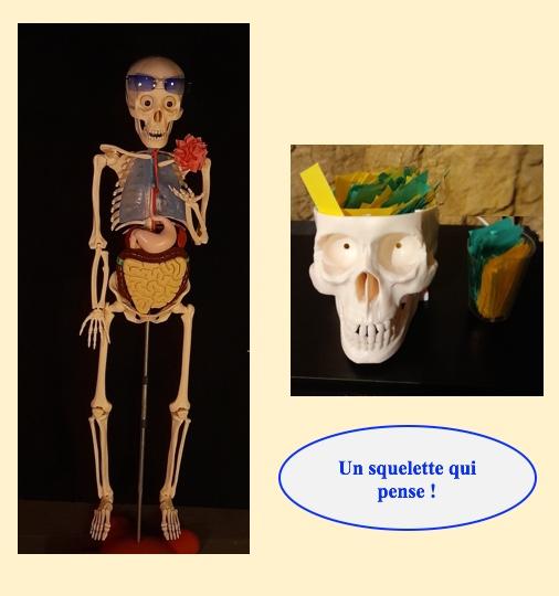 Cette image a un attribut alt vide ; son nom de fichier est 5.-squelette-1.jpeg